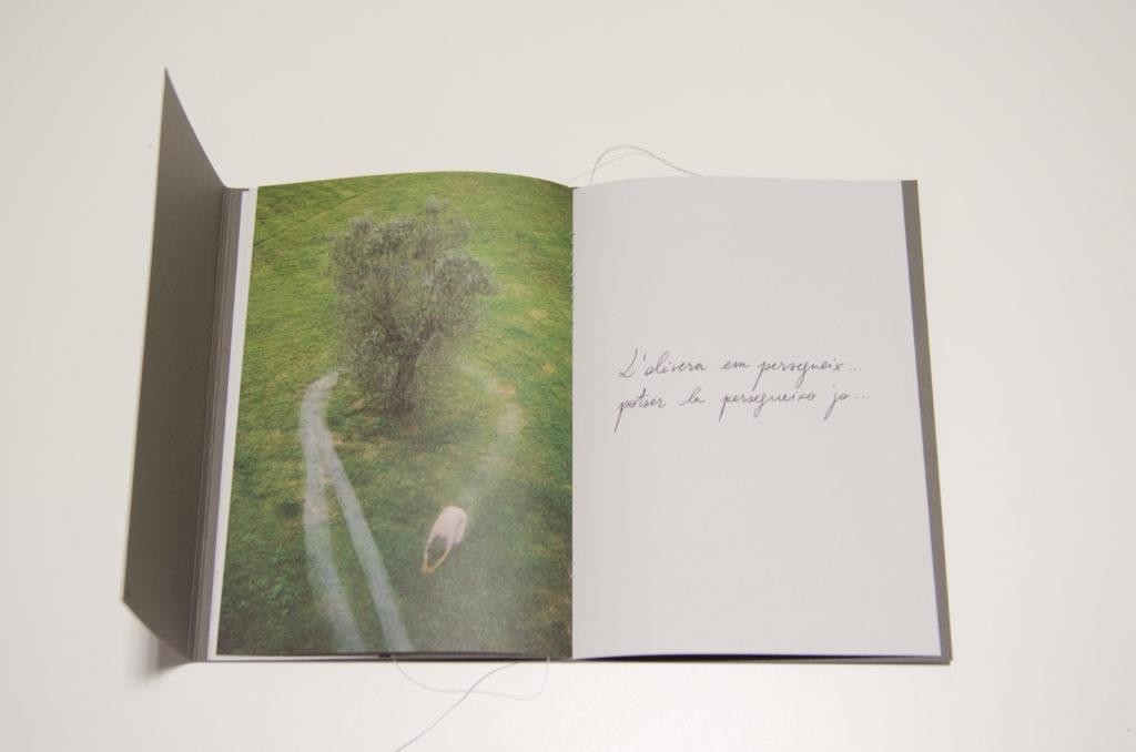 Llibre d'artista Ritmes de la natura